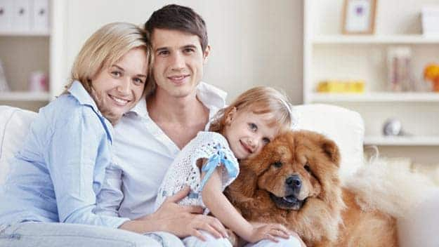 Wills & Trusts dog-young-family Direct Wills Horsham